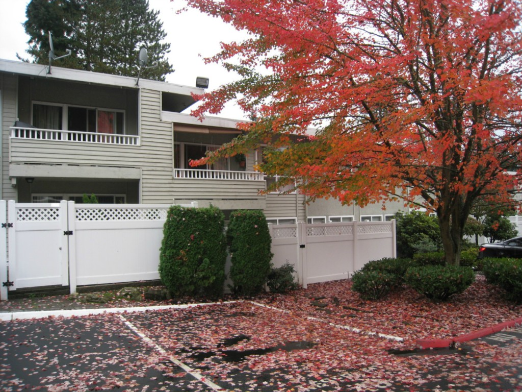 Rental Homes for Rent, ListingId:30352659, location: 831 126th Place NE #B101 Bellevue 98005