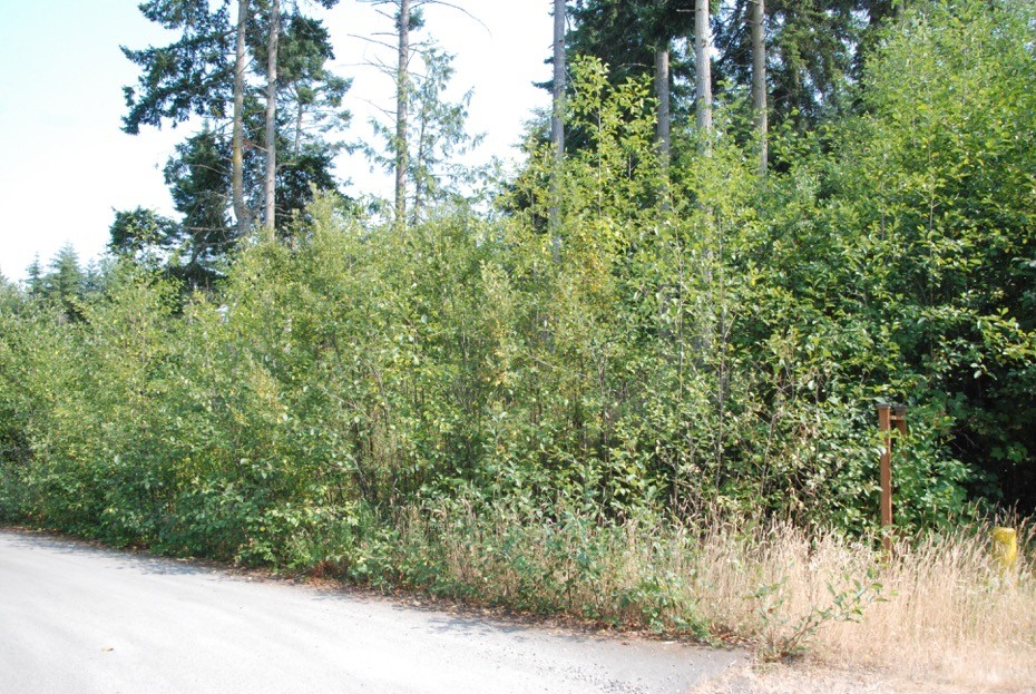 Land for Sale, ListingId:34404905, location: Pebble (Lot X) Lane Pt Townsend 98368