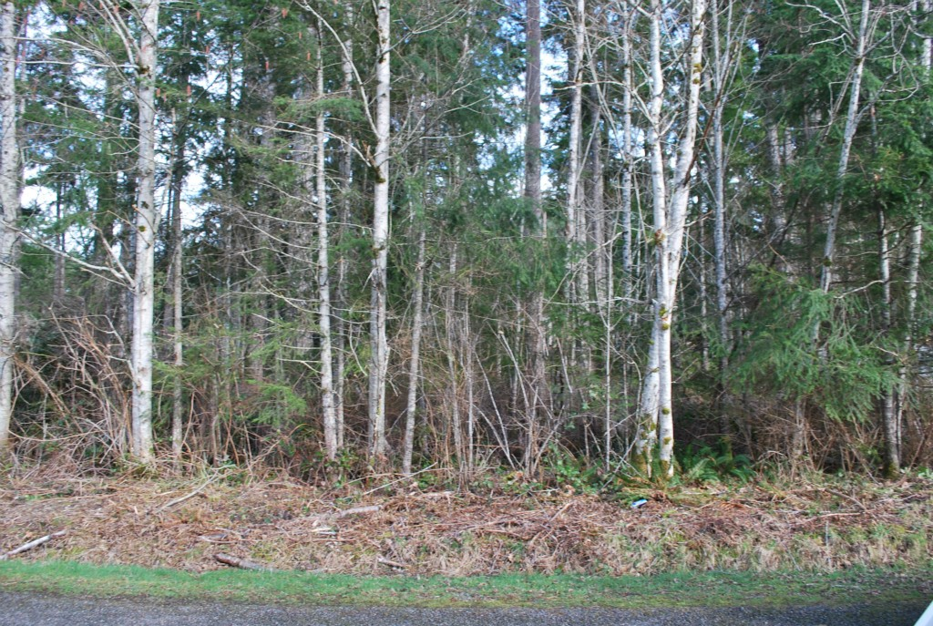 Land for Sale, ListingId:27003681, location: 191 E Skookum Dr Shelton 98584