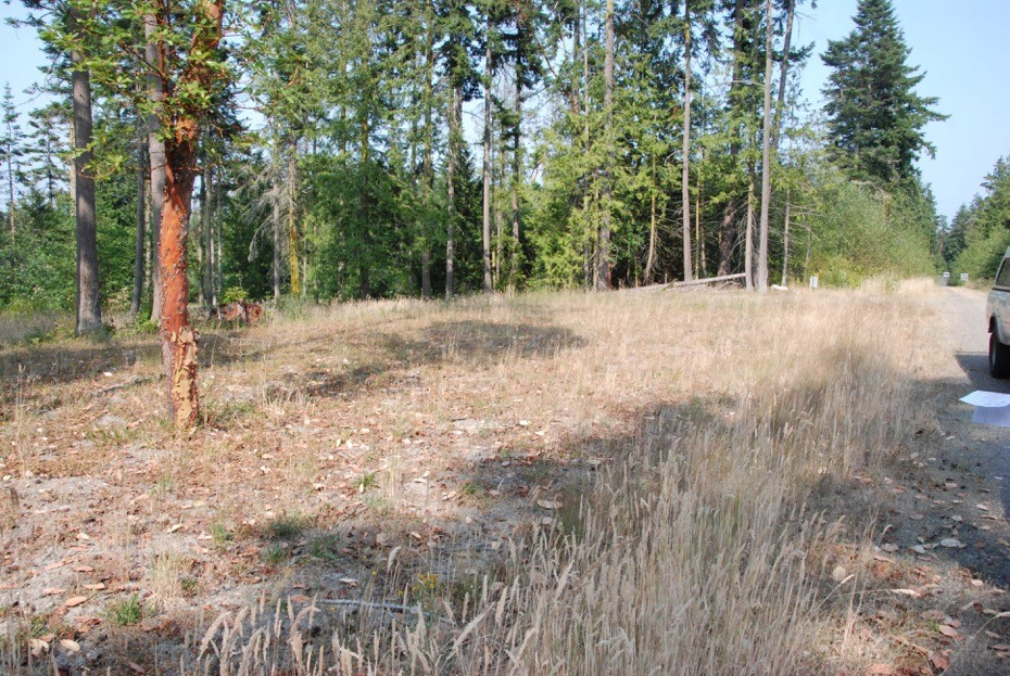 Land for Sale, ListingId:34404906, location: Balsa (Lot O) Wy Pt Townsend 98368