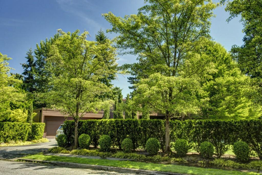 Rental Homes for Rent, ListingId:33362317, location: 2022 77th Ave NE Medina 98039