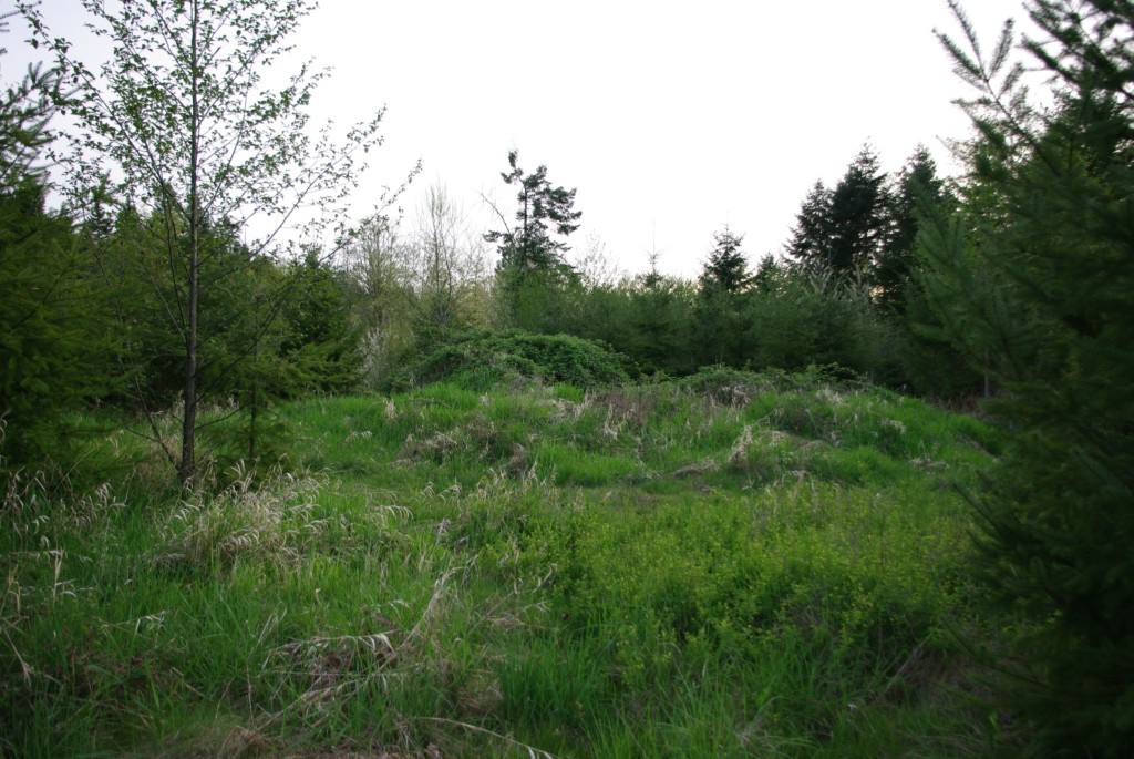 Land for Sale, ListingId:23340360, location: Senn Rd Chehalis 98532