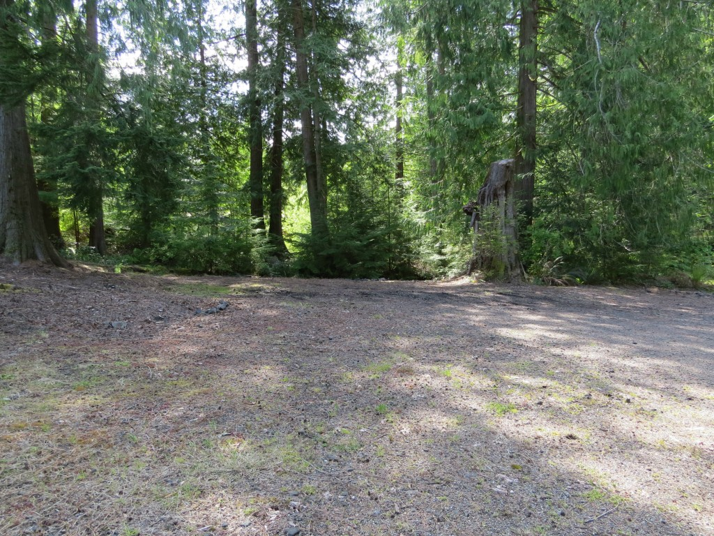 Land for Sale, ListingId:28241172, location: 121 SE Lupine Place Shelton 98584