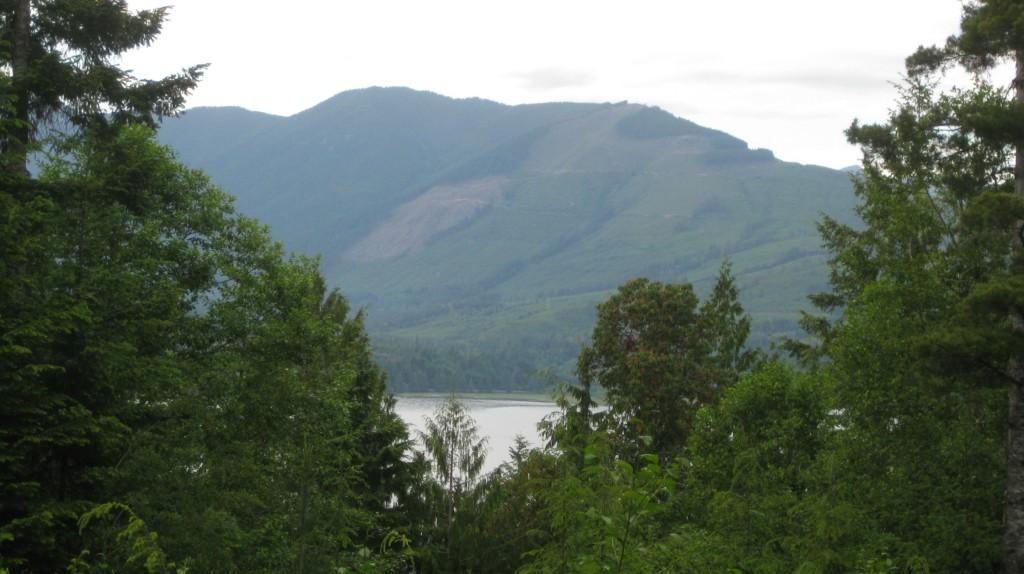 Land for Sale, ListingId:23926016, location: 19747 Stavis Bay Rd Seabeck 98380