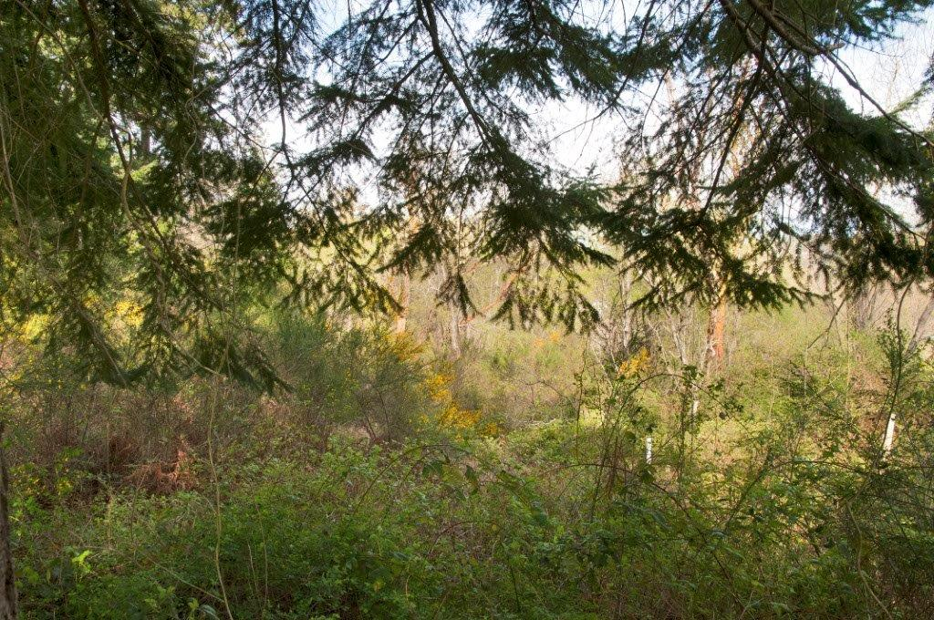 Land for Sale, ListingId:29727654, location: Umatilla St Pt Townsend 98368