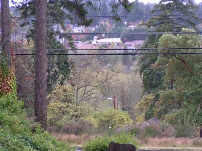 Real Estate for Sale, ListingId: 19687283, Tacoma,WA98466