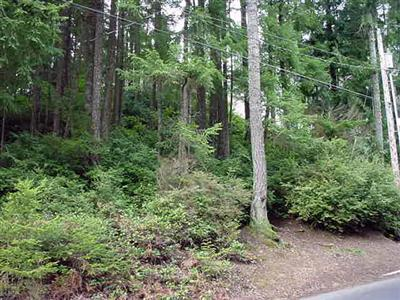 Land for Sale, ListingId:29746116, location: 3839 Silver Lane NW Bremerton 98312