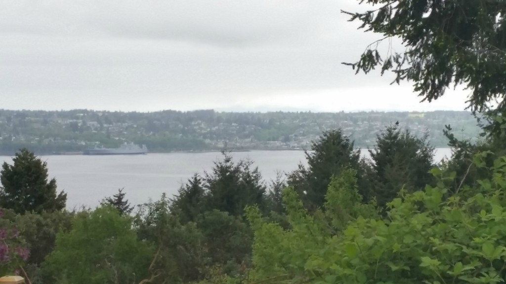Land for Sale, ListingId:33053286, location: 3908 Browns Point Blvd Tacoma 98422