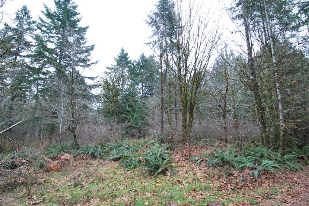 Land for Sale, ListingId:22700328, location: -XXX E Old Farm Rd Shelton 98584
