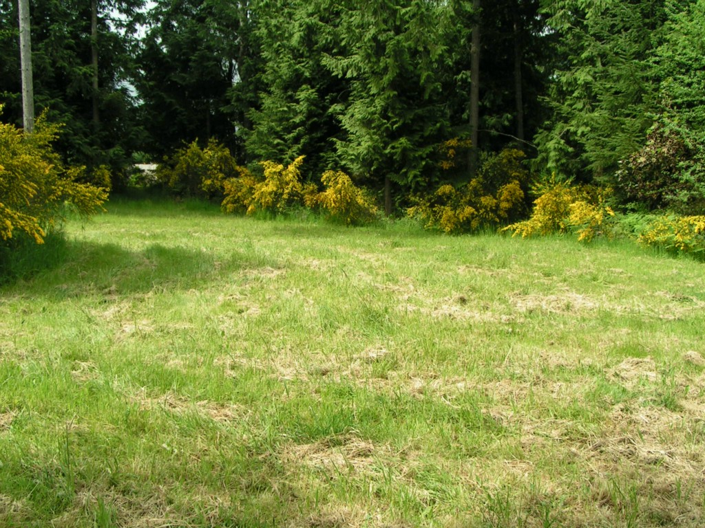 Land for Sale, ListingId:28168404, location: 9999 Milwaukee Dr Pt Angeles 98363