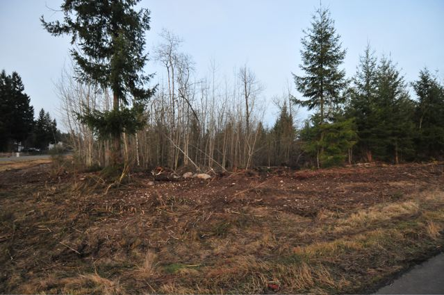 Real Estate for Sale, ListingId: 21931968, Yelm, WA  98597