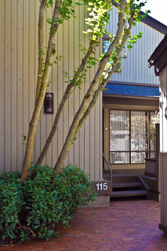Rental Homes for Rent, ListingId:34951165, location: 115 98th Ave NE Bellevue 98004