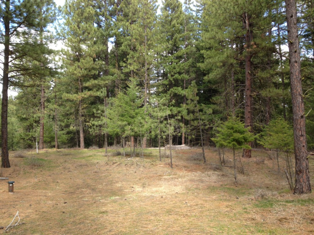 Real Estate for Sale, ListingId: 22928957, Cle Elum, WA  98922