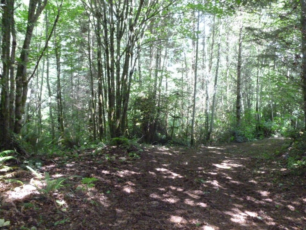 Land for Sale, ListingId:24380289, location: -Lot D Lofall Rd Poulsbo 98370