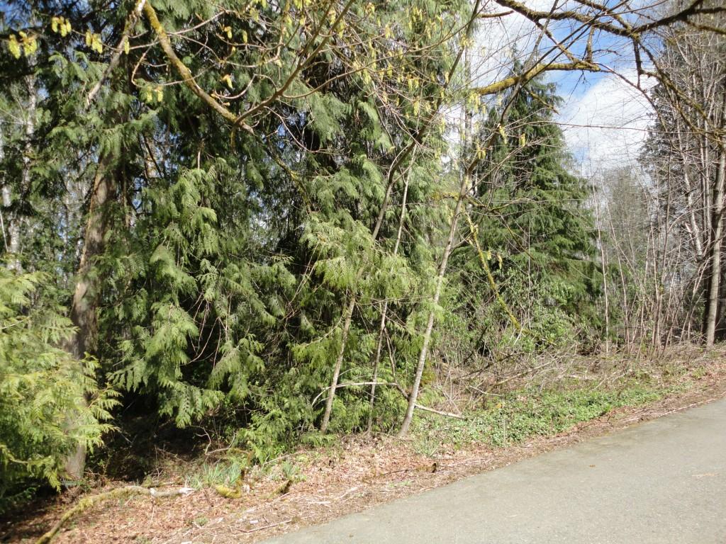 Land for Sale, ListingId:18834105, location: 90 SE Lupine Place Shelton 98584