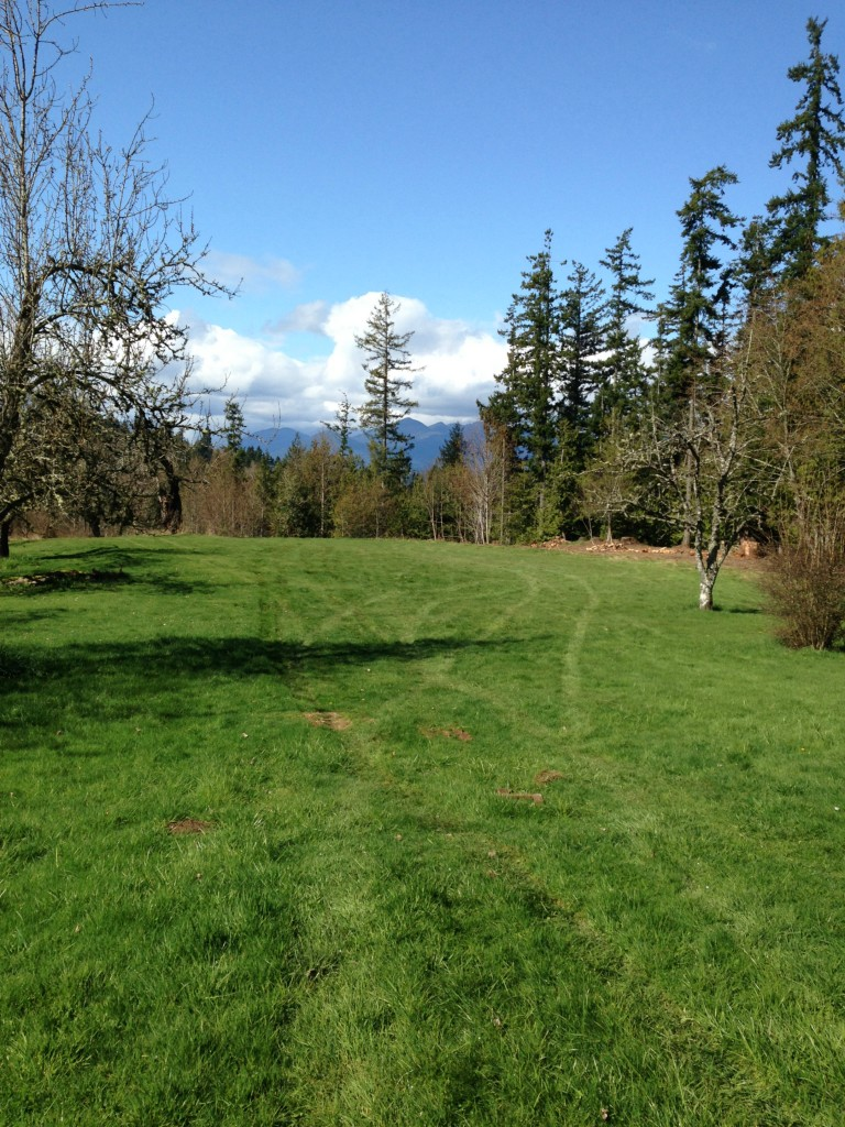 Single Family Home for Sale, ListingId:29295143, location: 7416 NW Anderson Hill Rd Silverdale 98383