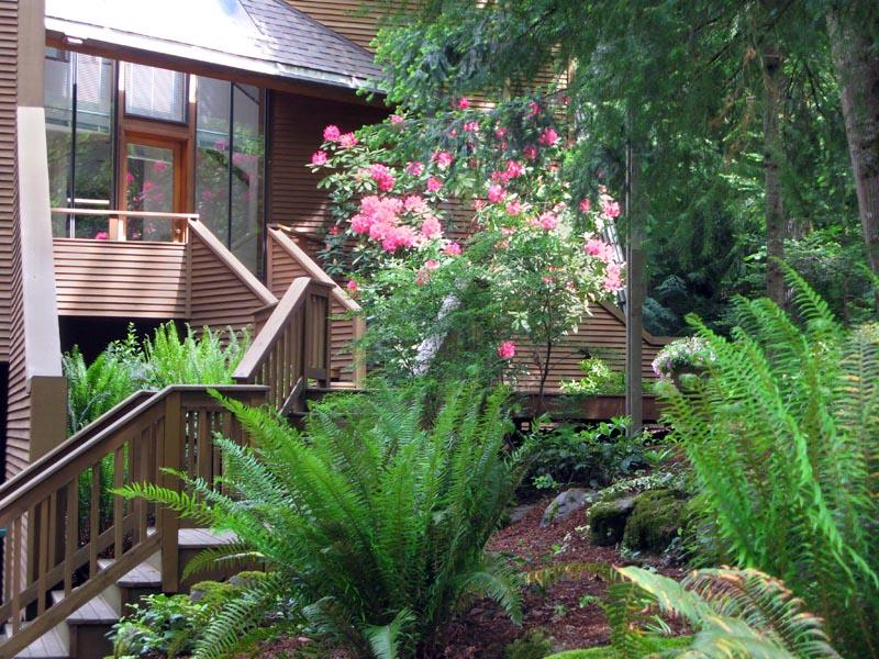 Rental Homes for Rent, ListingId:37259754, location: 20920 NE 115th St Redmond 98053