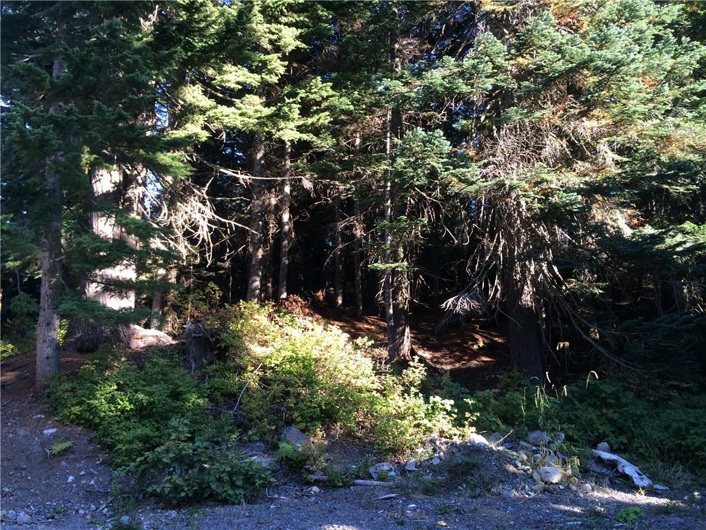 Real Estate for Sale, ListingId: 34581121, Snoqualmie Pass,WA98068