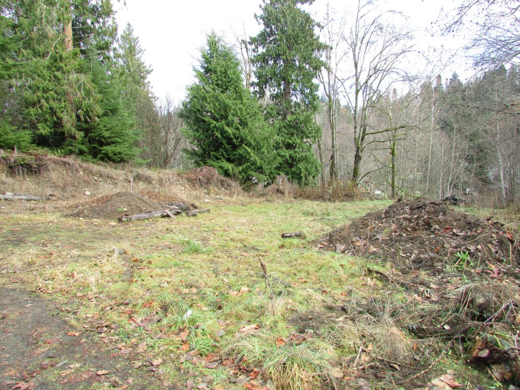 Land for Sale, ListingId:30972682, location: 283 S Alder Pt Angeles 98362