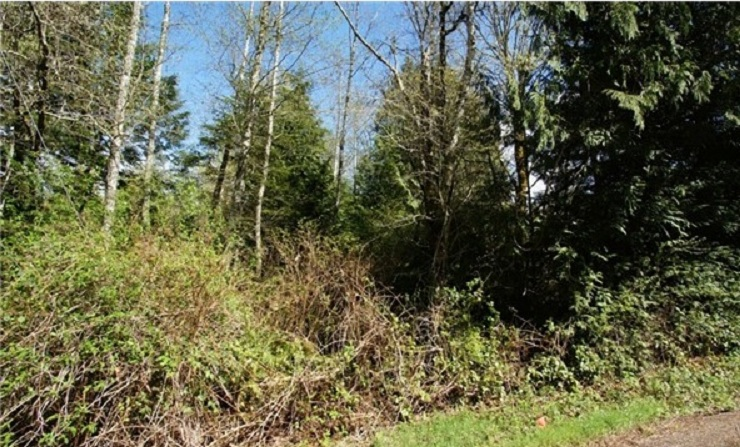 Land for Sale, ListingId:26881932, location: 4456 Eastway Dr SE Pt Orchard 98366