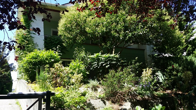 Rental Homes for Rent, ListingId:34522827, location: 5833 Woodlawn Ave N Seattle 98103