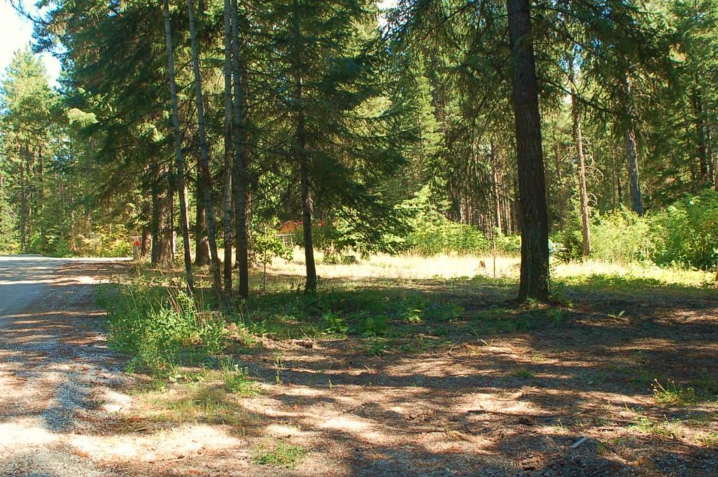 Real Estate for Sale, ListingId: 27525444, Leavenworth,WA98826