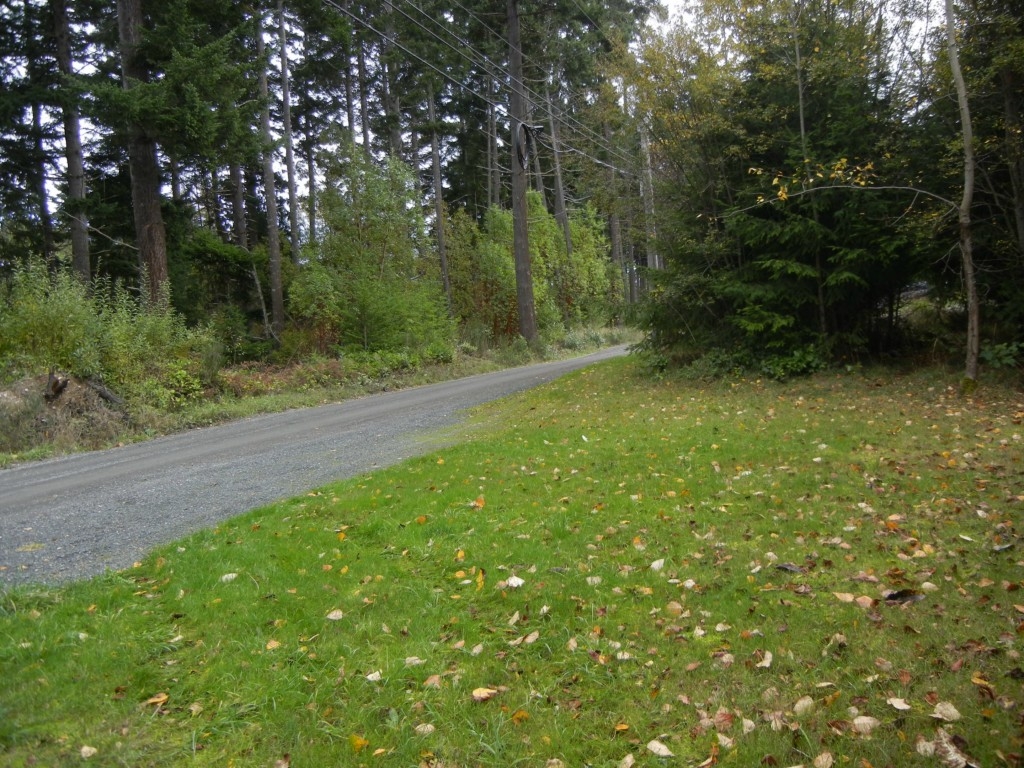 Land for Sale, ListingId:30565517, location: 1800-Lot 15 W 12th Pt Angeles 98362