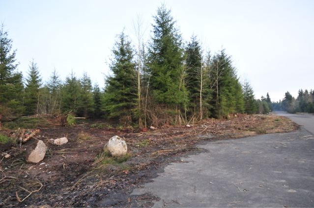 Real Estate for Sale, ListingId: 21931966, Yelm, WA  98597