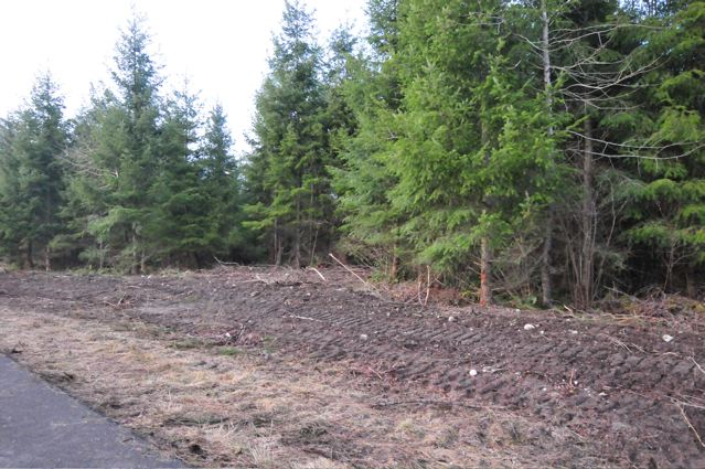 Real Estate for Sale, ListingId: 21931967, Yelm, WA  98597