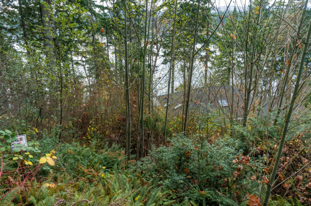 Land for Sale, ListingId:27133603, location: 4-Lot Sulphur Springs LN Lane Bremerton 98310