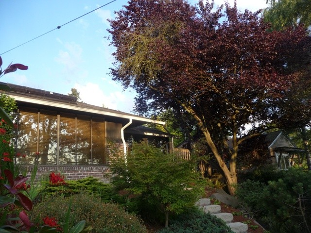 Rental Homes for Rent, ListingId:34540289, location: 3020 30th Ave W Seattle 98199