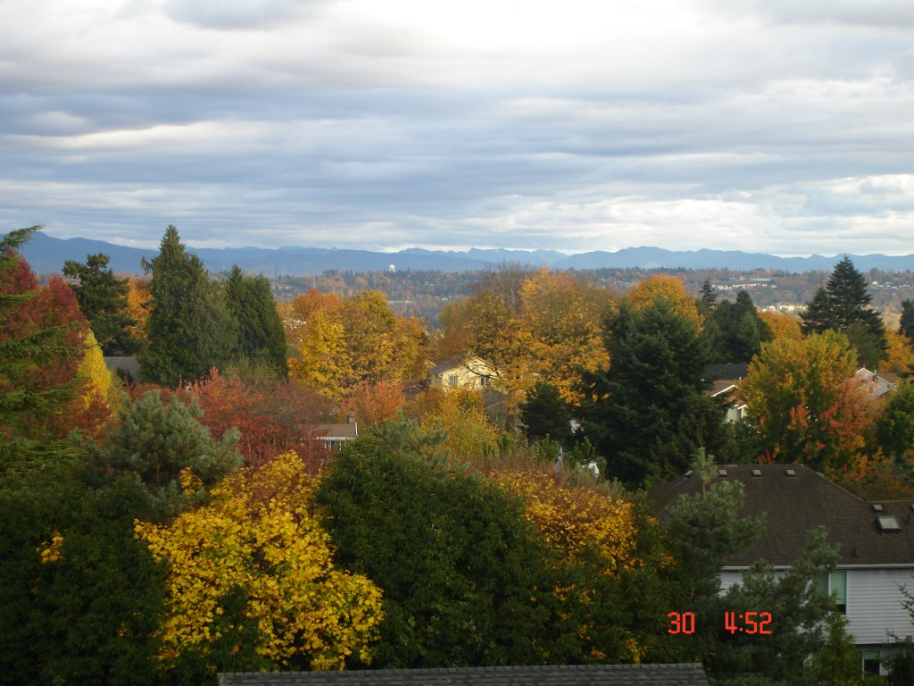 Real Estate for Sale, ListingId: 34865844, Tukwila,WA98168
