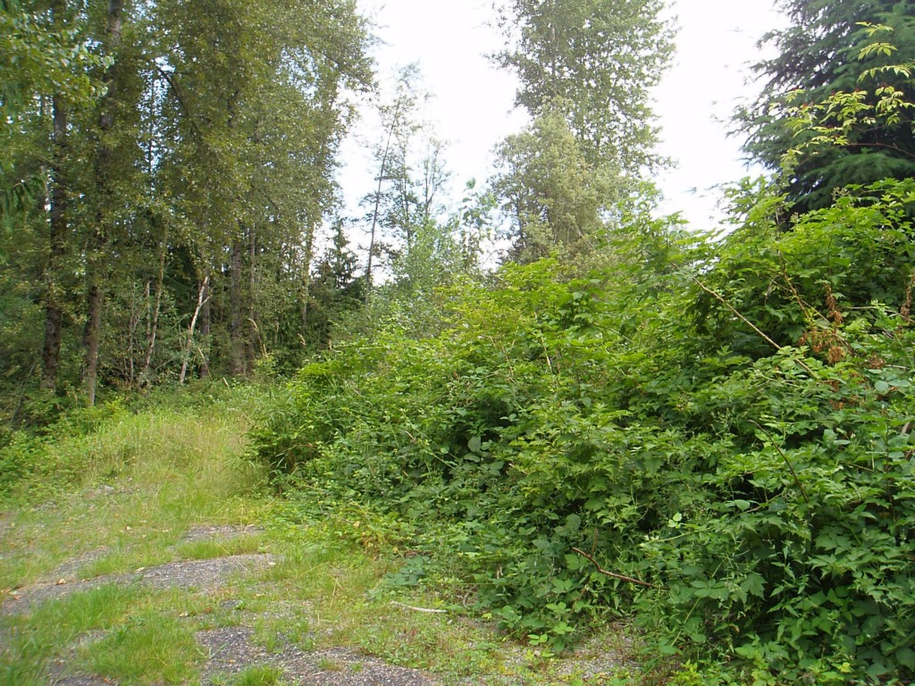 Real Estate for Sale, ListingId:29206777, location: SE 171st Ave SE #Lot 4 Snohomish 98290