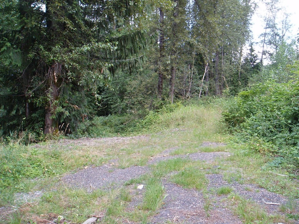 Real Estate for Sale, ListingId:29206778, location: SE 171st Ave SE #Lot 5 Snohomish 98290