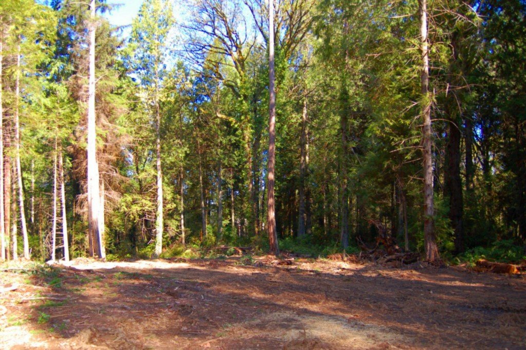 Land for Sale, ListingId:30927552, location: 16881-Lot D Agate Pass Rd NE Bainbridge Island 98110