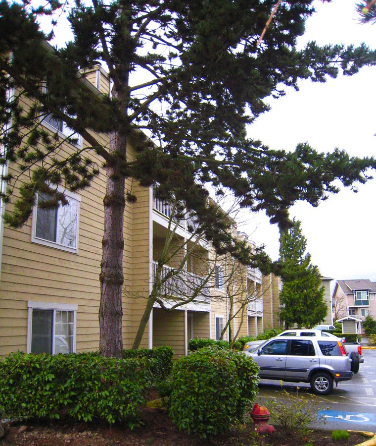 Rental Homes for Rent, ListingId:37138334, location: 1144 N 198th St #E105 Shoreline 98133