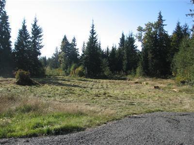 Real Estate for Sale, ListingId: 35547538, Granite Falls,WA98252