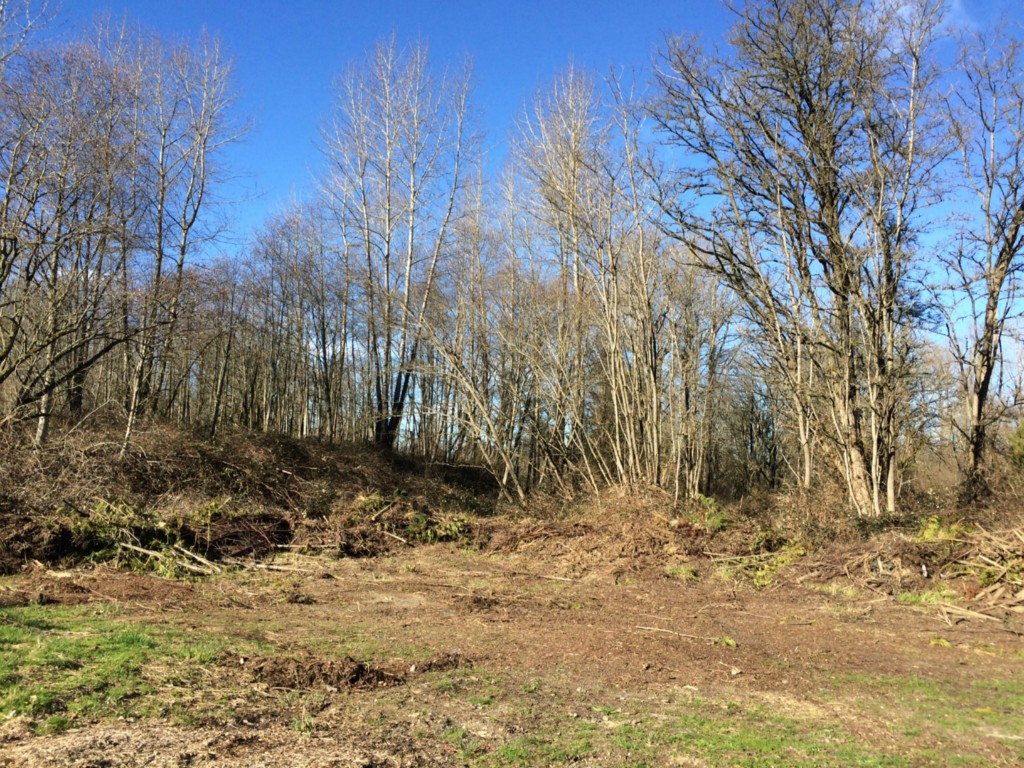 Land for Sale, ListingId:31690586, location: Broadway Ave Snohomish 98296
