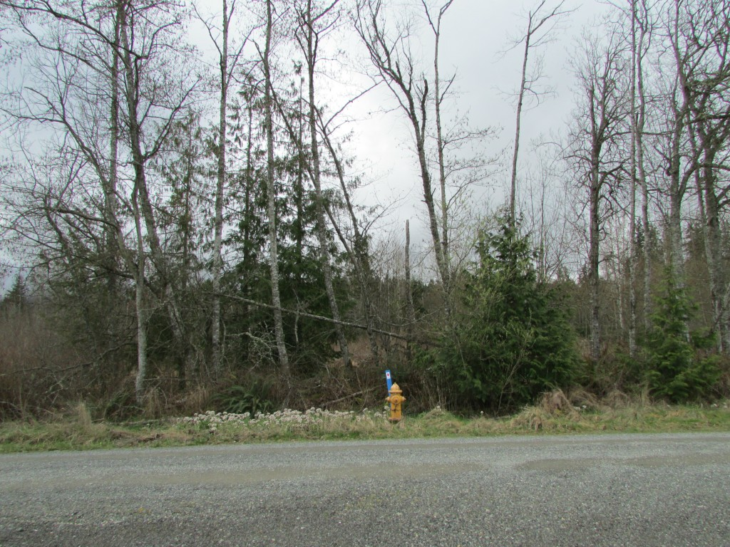 Land for Sale, ListingId:27503879, location: 9999 W Courtney Rd Pt Angeles 98363