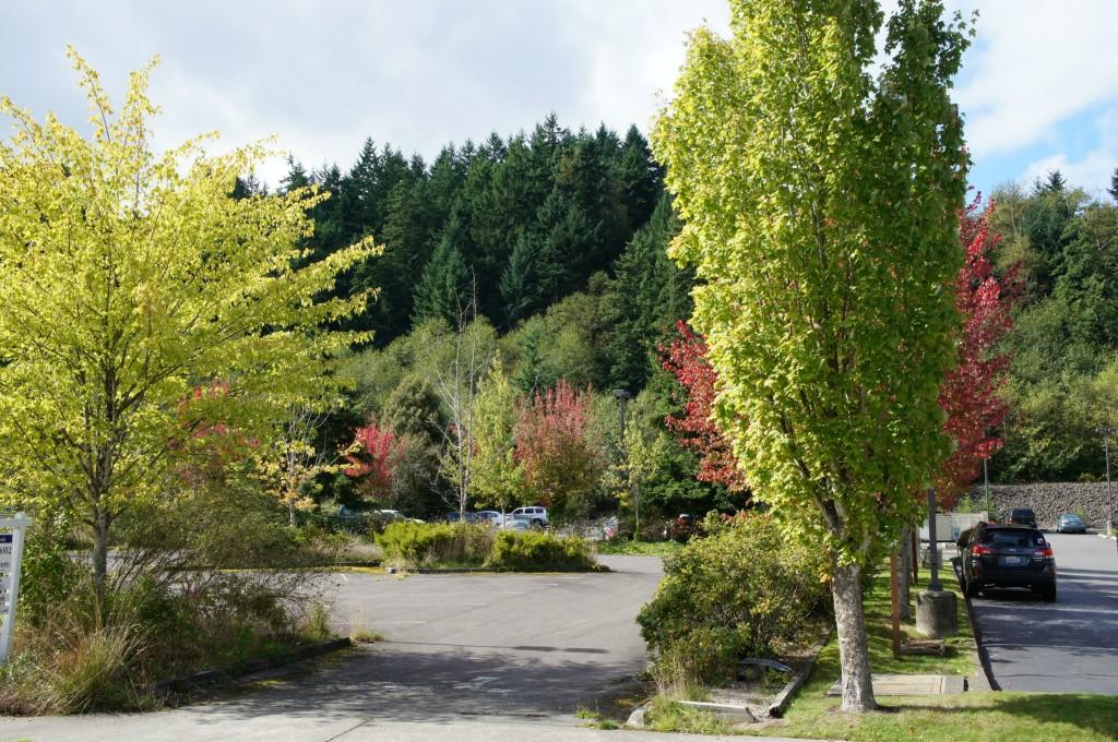 Real Estate for Sale, ListingId: 30084771, Poulsbo,WA98370