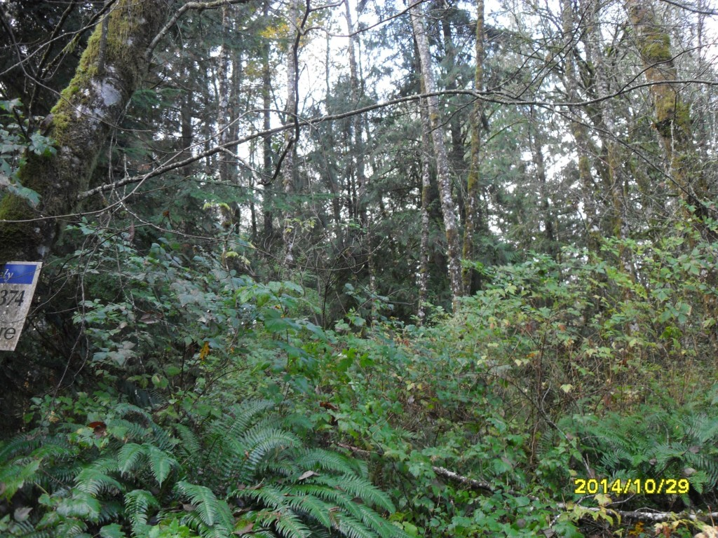 Land for Sale, ListingId:30496521, location: 12784 Eastbrook Dr SW Pt Orchard 98366