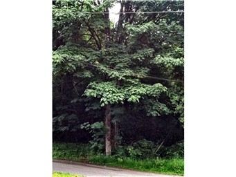 Land for Sale, ListingId:27980986, location: 5600 Forest Haven Lane SE Pt Orchard 98366