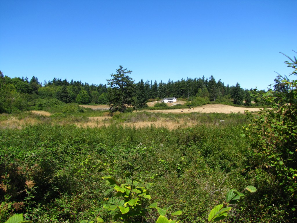 Land for Sale, ListingId:29260350, location: 9999 Umatilla Pt Townsend 98368
