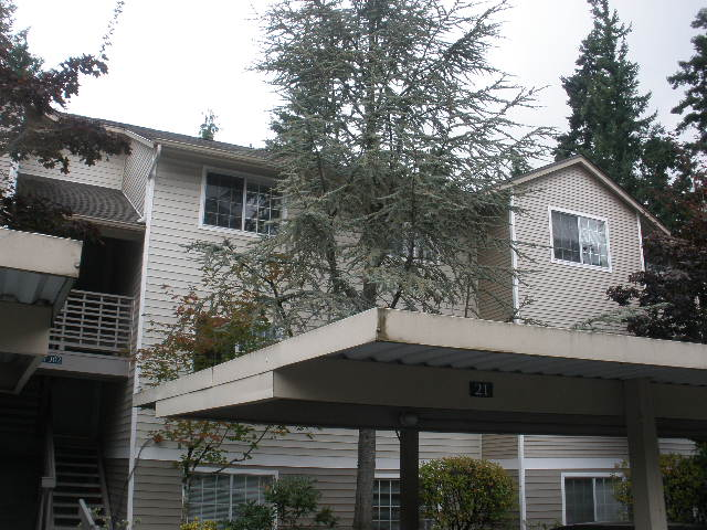 Rental Homes for Rent, ListingId:33433602, location: 1009 112th St SE #B302 Everett 98208
