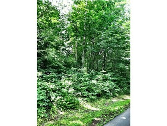 Land for Sale, ListingId:27980985, location: 5614 SE Forest Haven Lane Pt Orchard 98366