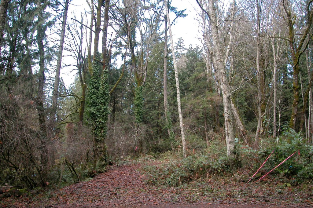 Land for Sale, ListingId:26540872, location: -Lot 9 Gazzam View Tracts Bainbridge Island 98110