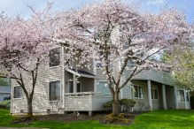 Rental Homes for Rent, ListingId:31318920, location: 9009 Avondale Rd NE #P-131 Redmond 98052
